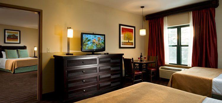 Premium suite view